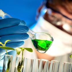 バイオテクノロジー関連